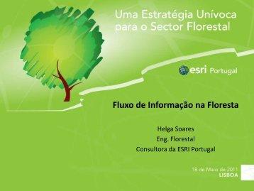 Fluxo de Informação na Floresta - Esri Portugal