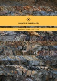 Chaarat Gold Holdings Annual Report and Accounts 2010