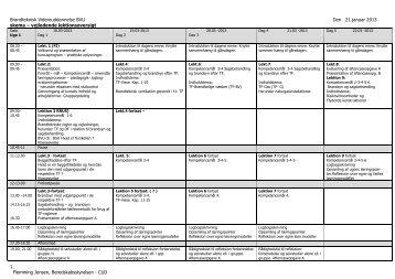 Konsulentfirmaet ARGO - Beredskabsstyrelsen