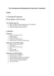 Topics & Papers 2012