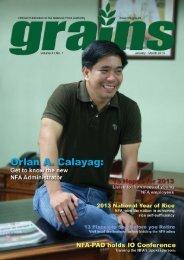 Grains 1st Quarter 2013.indd - NFA