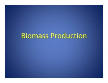 Biomass Production - Rutgers EcoComplex