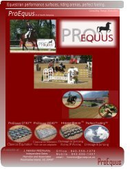 Equestrian performance surfaces, riding arenas, perfect ... - ProEquus