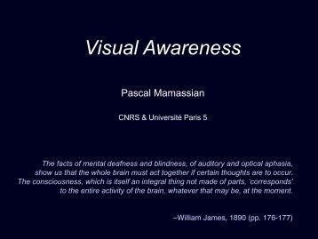 Visual Awareness - Pascal Mamassian