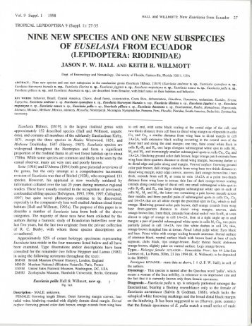 nine new species and one new subspecies of euselasia from ecuador