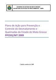 ppcdq/mt 2009 - Fundo Amazônia