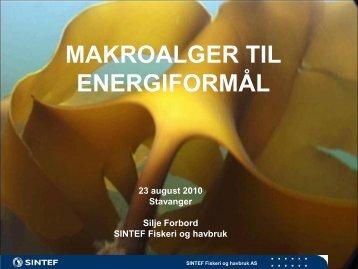 Silje Forbord - Makroalger til energiformål - BluePlanet AS