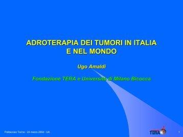 TERA Foundation Conference Presentation - Infn