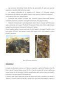 Geologia del territorio di laconi - Comune di Laconi - Page 3