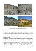 Geologia del territorio di laconi - Comune di Laconi - Page 7