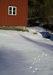 Untitled - Uddevalla kommun
