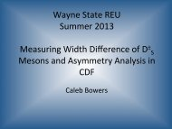 introduction - RHIG - Wayne State University