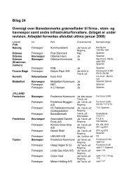 Bilag 24 Oversigt over Banedanmarks grænseflader til firma-, stam ...