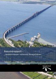 Resumérapport - Handlemuligheder vedrørende Storstrømsbroen