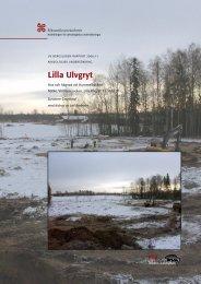 Rapport 2006:11 - arkeologiuv.se