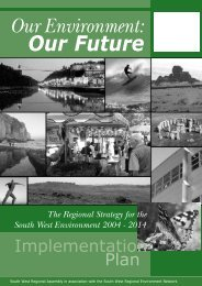 Implementation Plan - South West Regional Assembly