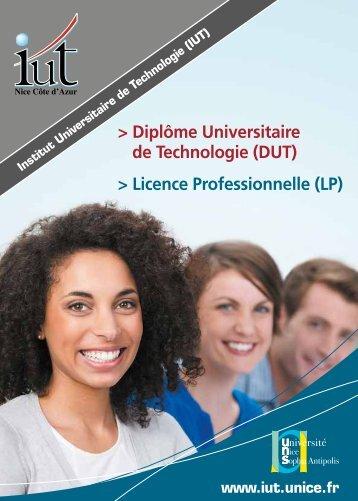 > Diplôme Universitaire de Technologie (DUT) > Licence Professionnelle (LP)