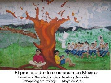 proceso de deforestacion en Mex - Era-mx.org