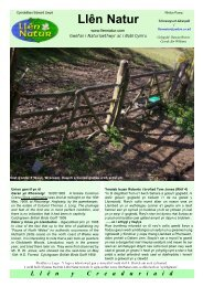 rhifyn 5 - Gwefan naturiaethwyr a phobl Cymru