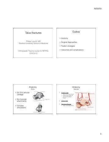 Talus - Orthopaedic Trauma Association