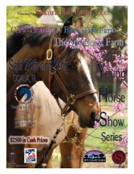 Download File - Young Horse Show Series