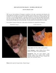 2013 OBC Batwatch Nicaragua Mammal List - Fiona Reid