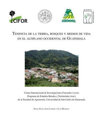 tenencia de la tierra , bosques y medios de vida en el altiplano ...