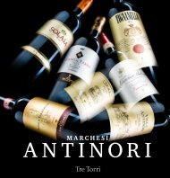 Marchesi Antinori - 26 Generationen Weinbau
