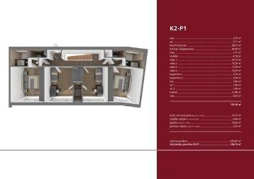 K2-P1