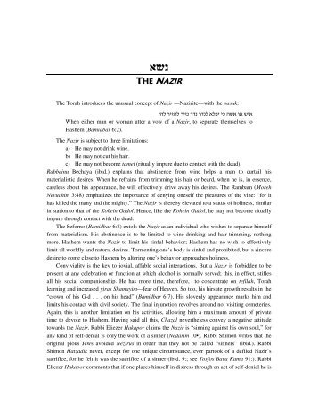 Parshat shemini summary