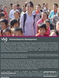 VSO China strategy information sheets