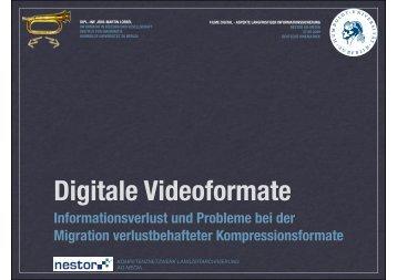 Digitale Videoformate - Informationsverlust und Probleme bei der ...