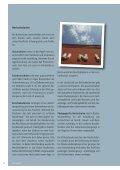 Ausgelernt – und nun? Studieren! - AStA Paderborn - Seite 6