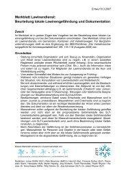 "Merkblatt: ""Lawinendienst: Standard einer Dokumentation"""