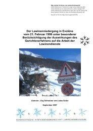 Der Lawinenniedergang in Evolène vom 21. Februar 1999 ... - WSL