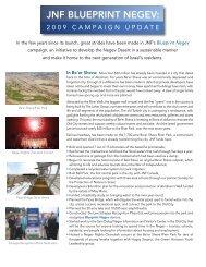 JNF BLUEPRINT NEGEV: - Jewish National Fund
