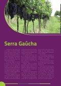 Avaliação Setorial 2013 - Ibravin - Page 4