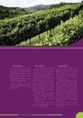 Avaliação Setorial 2013 - Ibravin - Page 5