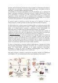 Documento pdf - Asociación Vasca de Pediatría de Atención Primaria - Page 3