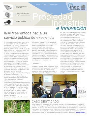 febrero 2011 - Inapi