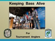 Bass-Handling
