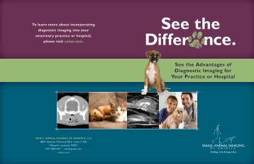 Overview/Capabilities Brochure - SAIOA