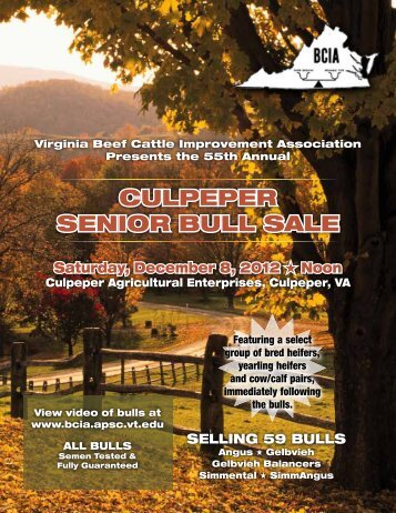 CULPEPEr SENIor BULL SALE - Virginia BCIA! - Virginia Tech