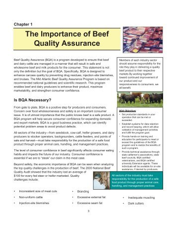 The Importance of Beef Quality Assurance (PDF   180KB)