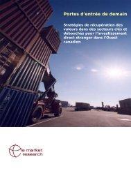 Version PDF du rapport de Portes d'entrée de demain : Stratégies ...