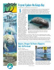 Urgent Update On Kings Bay - Save the Manatee Club