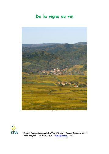 Le travail de la vigne - Les Vins d'Alsace