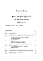 Modul-Handbuch zum Bachelor-Studiengang ... - Institut für Chemie