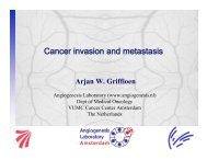Lecture AUC 2012: Cancer metastasis and invasion - Angiogenesis ...