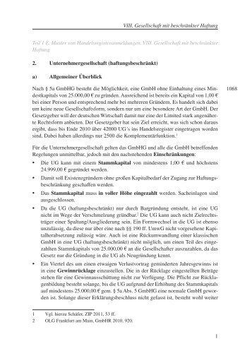 zap hb a5 vorlage 9ptindd soldande - Abberufung Geschaftsfuhrer Muster
